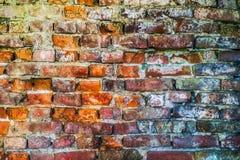 红色老被佩带的砖墙纹理 免版税库存图片