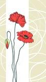 红色背景花卉的鸦片 库存图片