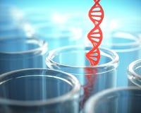 红色脱氧核糖核酸试管 免版税库存图片