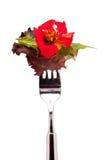 红色花叶子沙拉 免版税库存照片