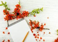 红色花和一个笔记本的构成笔记的关于木 库存照片