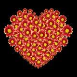 红色花和在黑色隔绝的爱文本的美好的心脏 保存与裁减路线 免版税库存图片