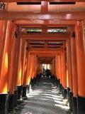 红色花托寺庙京都 免版税图库摄影