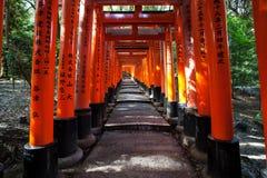 红色花托导致山道路在Fushimi Inari寺庙,京都 图库摄影