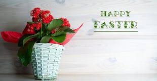 红色花花束在一个wilkin罐的,反对木头背景  库存图片