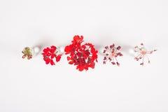 红色花行在玻璃瓶子的 免版税库存图片