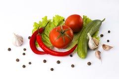 红色苦涩胡椒黄瓜和蕃茄在白色背景 免版税库存图片