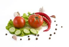 红色苦涩胡椒黄瓜和蕃茄在白色背景 库存图片