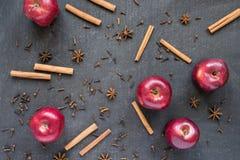 红色苹果、八角和桂香 库存照片