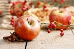 红色苹果、肉桂条和茴香在木桌上 免版税图库摄影