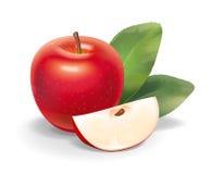 红色苹果例证 库存图片