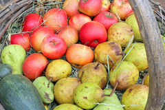 红色苹果和成熟梨在老篮子 免版税库存照片