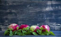 红色苹果和薄菏在黑暗的背景 库存图片