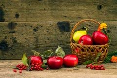 红色苹果和黄色梨在篮子 免版税库存图片