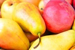 红色苹果和黄色梨, DOF 免版税库存照片