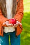 红色苹果在儿童的手上在公园 库存图片