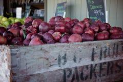 红色苹果在市场上 库存照片