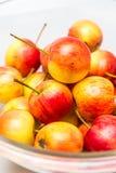 红色苹果在碗增长 免版税库存图片