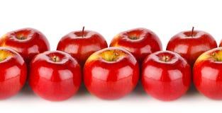 红色苹果无缝的纹理  库存图片