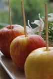 红色苹果果子 库存照片
