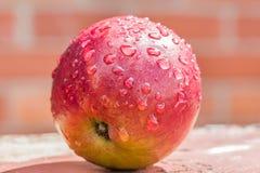 红色苹果用水投下特写镜头 库存照片