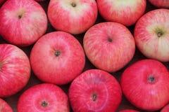 红色苹果背景 图库摄影