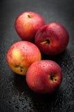 红色苹果 免版税库存图片
