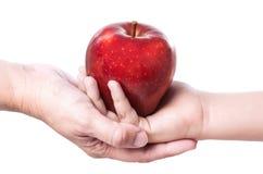 红色苹果12 免版税图库摄影