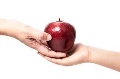 红色苹果15 免版税库存照片
