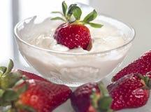 红色草莓特写镜头点心用酸奶 免版税库存图片