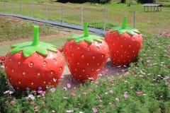红色草莓雕象行在波斯菊花中的 库存图片
