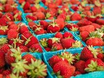 红色草莓水果篮 免版税库存图片