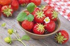 红色草莓 库存图片