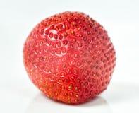 红色草莓 免版税图库摄影