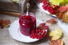 红色荚莲属的植物莓果用糖和蜂蜜在一个玻璃瓶子在背景与书、莓果和叶子 图库摄影