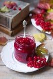 红色荚莲属的植物莓果用糖和蜂蜜在一个玻璃瓶子在背景与书、莓果和叶子 库存照片