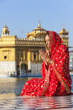 红色莎丽服的夫人在金黄寺庙。 免版税库存图片