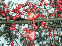 红色莓果和红色心脏,华伦泰` s天 库存图片