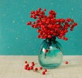 红色莓果神圣的竹子(Nandina Domestica) (文本的地方) 库存图片