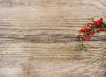 红色莓果(枸子属植物horizontalis)在桌上 库存图片