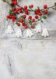 红色莓果(枸子属植物horizontalis)在桌上 免版税库存照片