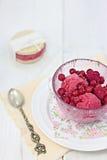 红色莓果冰糕 免版税库存图片