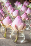 红色莲花卖花人为祈祷给菩萨 免版税库存图片
