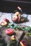 红色葡萄园桃子 库存图片