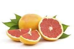 红色葡萄柚 免版税库存照片