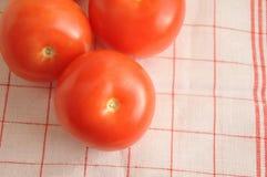 红色蕃茄和西红柿汁 库存照片