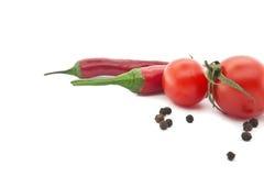 红色蕃茄和辣椒 墨西哥食物的菜 免版税库存照片