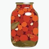 红色蕃茄在玻璃银行中。 例证 免版税库存照片