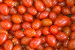 红色蕃茄背景小蕃茄 库存照片