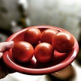 红色蕃茄 在葡萄酒生动的颜色的艺术性的神色 免版税库存照片